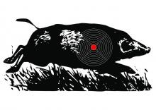 Тир или стрелковый клуб - куда пойти пострелять?