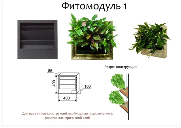 fitomodul