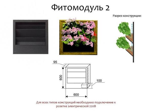 fitomodul2