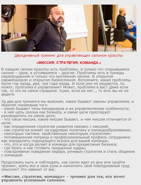 Миссия. Стратегия Команда, тренинг Дмитрия Вашешникова в Ижевске