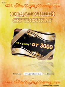 Фотограф Данилова Яна - сертификат на фотосессию