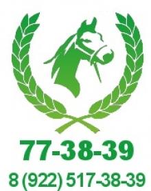 Светлое - конно-спортивный клуб, база отдыха, район г. Воткинска